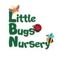 Little Bugs Nursery